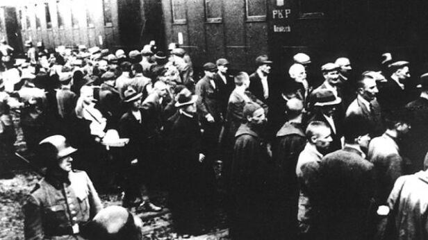 Transport Polaków do Auschwitz wikipedia