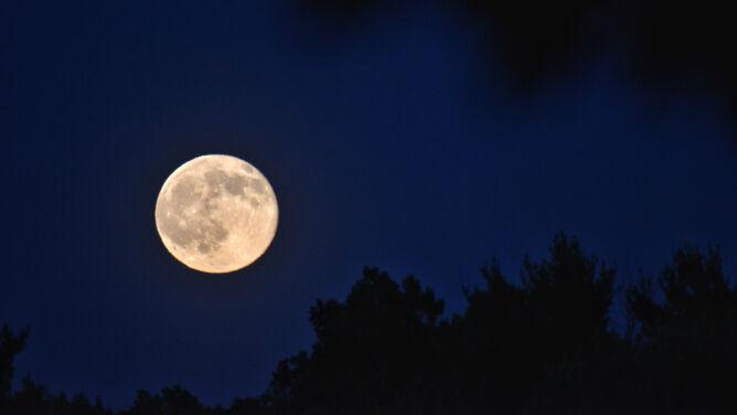 """""""Truskawkowy"""" Księżyc już dziś na niebie"""