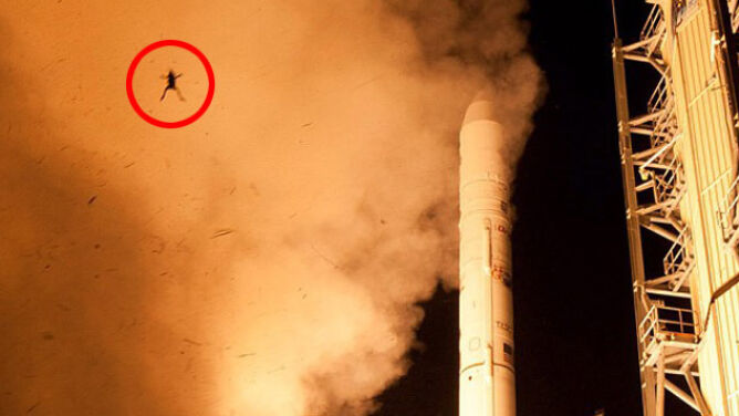 Bohaterka drugiego planu: latająca żaba na kosmodromie NASA