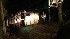 Polskie żubry przybyły do Bułgarii
