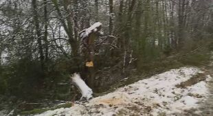 Tarnów w śniegu